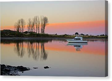 Whakatane At Sunset Canvas Print by Venetia Featherstone-Witty