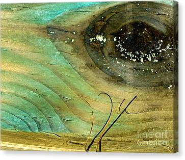 Whale Eye Canvas Print