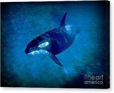 Whale Canvas Print by John Malone