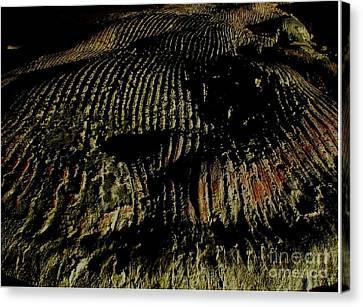 Whale On Stinson Beach 2 Canvas Print