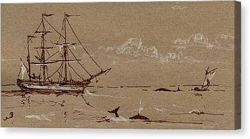 Marine Mammals Canvas Print - Whaler Ship Frigate by Juan  Bosco