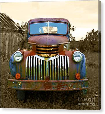 What A Beauty Canvas Print by John Debar