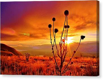 What A Morning Canvas Print
