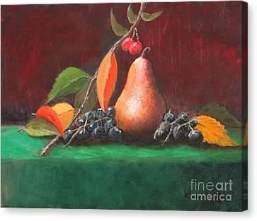Bosc Pear Canvas Print