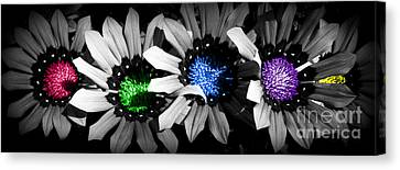 Canvas Print featuring the photograph Colored Blind by Janice Westerberg