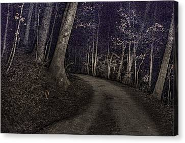 What Lies Lurking Canvas Print by William Fields