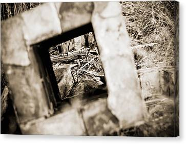 Canvas Print featuring the photograph What Remains by Amber Kresge