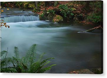 Canvas Print featuring the photograph Whatcom Falls Park by Jacqui Boonstra