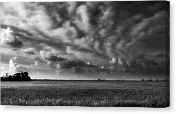 Wheat Black And White Canvas Print by Eric Benjamin