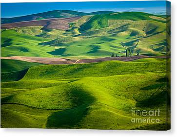 Rural Scenery Canvas Print - Wheat Hill by Inge Johnsson