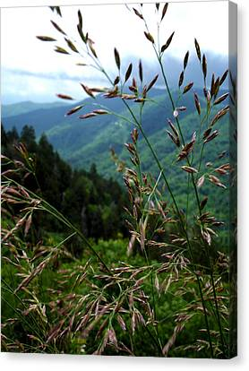 Wheat In The Clouds Canvas Print by Russell Clenney