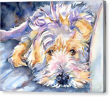 Watercolor Pet Portraits Canvas Print - Wheaten Terrier Painting by Maria's Watercolor