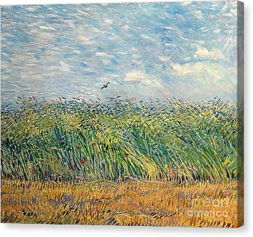 Wheatfield With Lark Canvas Print