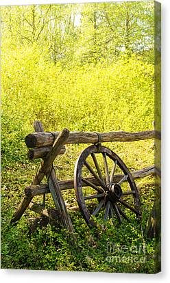 Wheel On Fence Canvas Print by Carlos Caetano