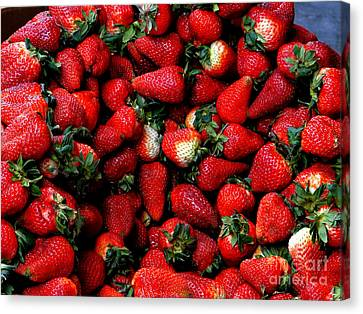 Wheelbarrow Of Strawberries Canvas Print by Al Bourassa