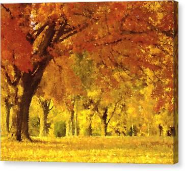 When Autumn Leaves Fall Canvas Print