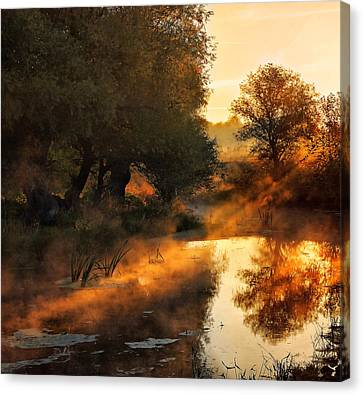 When Nature Paints With Light Canvas Print