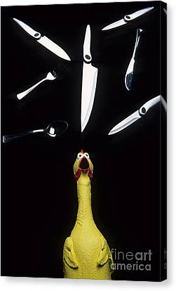 When Rubber Chickens Juggle Canvas Print