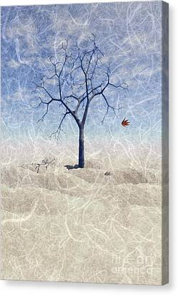 The Universe Canvas Print - When The Last Leaf Falls... by John Edwards