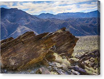 Palm Springs Canvas Print - Where Andreas And Murray Meet 1 by Scott Campbell