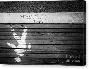 Where Do They Come From? Canvas Print by John Farnan