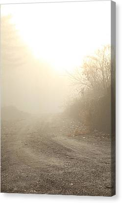 Where Does The Road Lead Canvas Print by Karol Livote