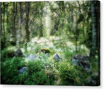 Fairies Canvas Print - Where Fairies Dwell by Gun Legler