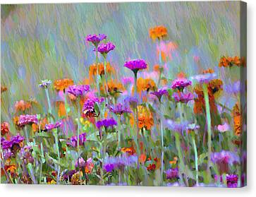 Where Have All The Flowers Gone Canvas Print by Bill Cannon