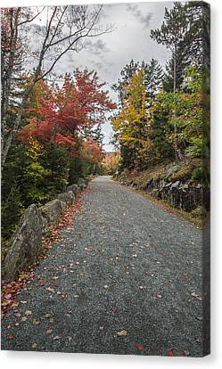 Maine Mountains Canvas Print - Where I Go by Jon Glaser