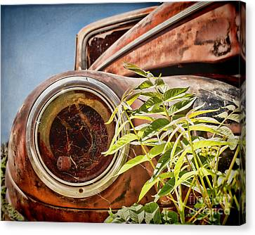 Where Is The Headlight Canvas Print