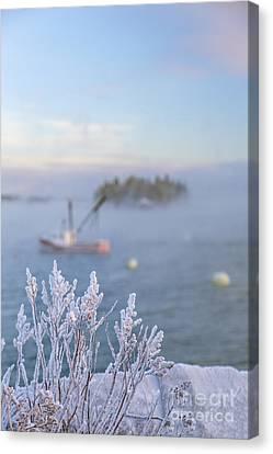 Maine Winter Canvas Print - Where Morning Glories Grow by Evelina Kremsdorf