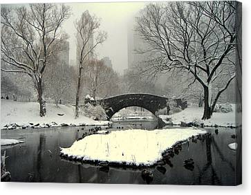 Where The  Ducks Go When It Gets All Frozen Over Canvas Print by Ljubisa Milisavljevic