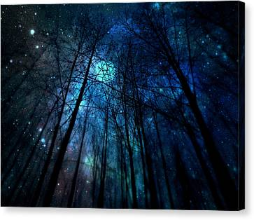 Canvas Print featuring the photograph Where The Faeries Meet by Micki Findlay