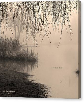 Where The Heart Is Canvas Print by Jeanette C Landstrom