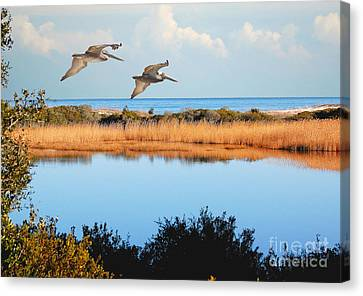 Where The Marsh Meets The Atlantic Canvas Print by Kathy Baccari