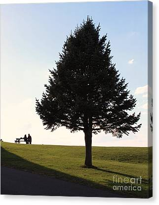 Canvas Print featuring the photograph Where The Two Can Sit by Sebastian Mathews Szewczyk