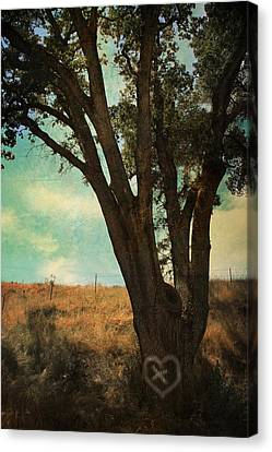 Where We'll Meet Canvas Print by Laurie Search