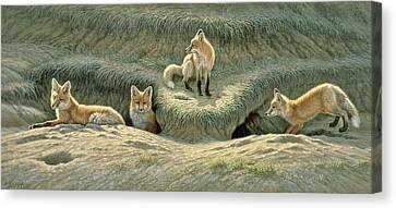 Where's Mom-fox Pups Canvas Print by Paul Krapf