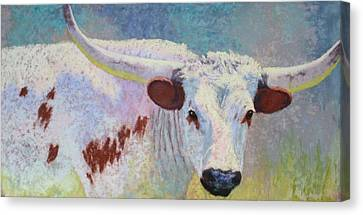 Where's Texas Canvas Print by Nancy Jolley