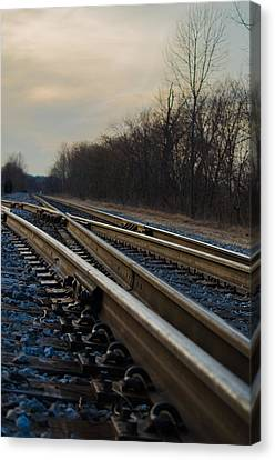 Which Path To Take Canvas Print