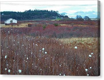 Whidbey Island  Canvas Print