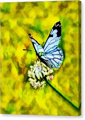 Canvas Print featuring the painting Whimsical Butterfly On A Flower by Tracie Kaska
