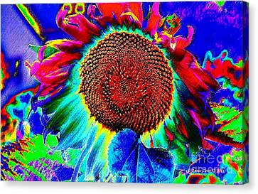 Whimsical Colorful Sunflower Canvas Print