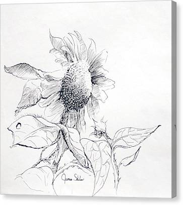 Whimsical Sunflower  Canvas Print by James Skiles