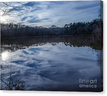 Whipped Cream Reflection Canvas Print by Donna Brown