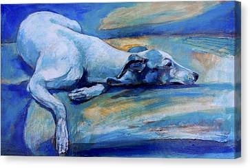 Whippet-effects Of Gravity-6 Canvas Print by Derrick Higgins