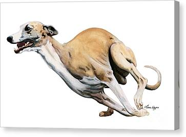 Whippet In The Wind Canvas Print by Liane Weyers
