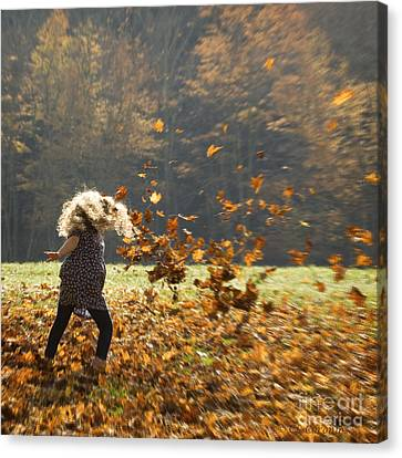 Canvas Print featuring the photograph Whirling With Leaves by Carol Lynn Coronios