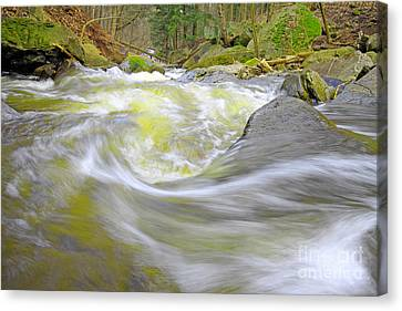 Whirlpool In Forest Canvas Print by Charline Xia