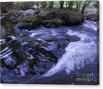 Canvas Print featuring the photograph Whirls by Mini Arora